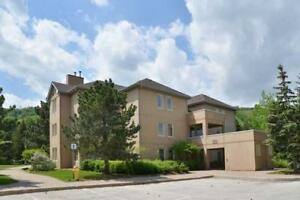 BLUE MOUNTAIN RENTAL VILLAGE  LUXURY CONDO  1750 sf  - 3 BEDROOM