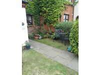 3 double bedroom house large kitchin lovely big house nice decor in and out 3 toilts 2 bath