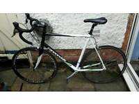 Cannondale CAAD 8 - XL