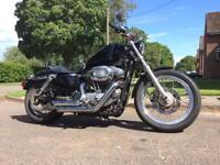 Harley Davidson Sportster XL 883L