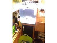 £150 Aqua one nano marine tank comes with a chromis a manderin a hermit crab and a emerald crab