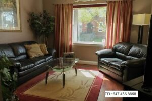 charming house for rent hamilton