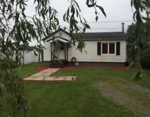 Cozy little house for rent imedieatley