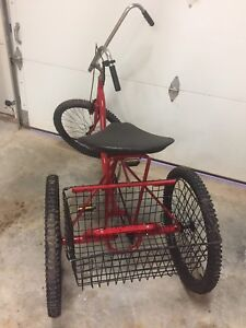 Adult size tricycle