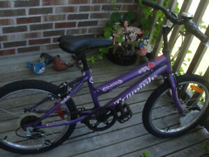 "Girls Bike 20"" great condition"
