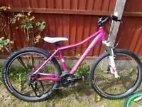 Girls pink cube bike