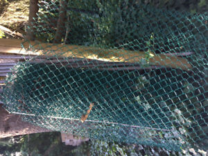 50 plus ft chain link fence