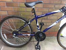 "Dunlop Sports Velocity series 24"" bike with free Helmet"