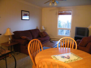 1 Bedroom Fully Furnished Apartment Available Sept 1st