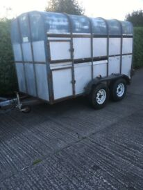 Crooks cattle trailer 10x5