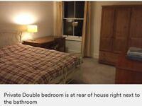 Single occupancy double bedroom to rent