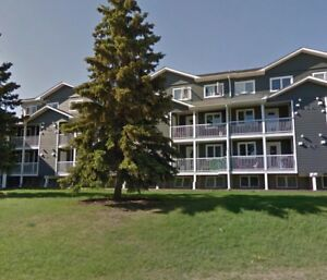Beautiful 2 Bedroom Condo in East Hill
