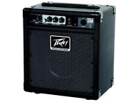 Peavey bass guitar combo amplifier