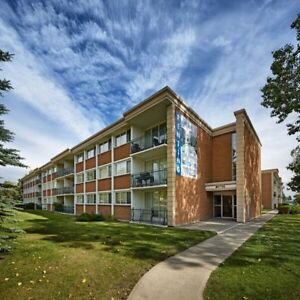 3 Bedroom Apt Family Community South East Calgary