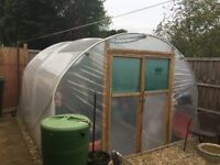 Poly tunnel 10 x 10ft