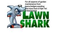 LAWN SHARK