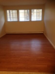 1 Bedroom renovated apartment