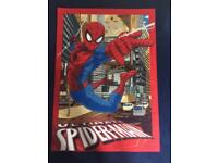 Spider man rug, single duvet set and wall canvas