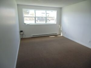 2 Bedroom apartment in Grand Falls!