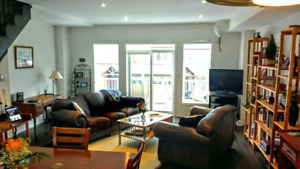 Collingwood Blue Mountain Chalet Vacation Rental Property avail