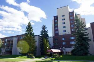 ALL Utilities Included Spacious 1 Bedroom + Den! Available Now!!