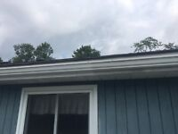 Eavestrough cleaning 75$
