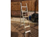 DOUBLE EXTENSION 6 TREAD 2 IN 1 LADDER