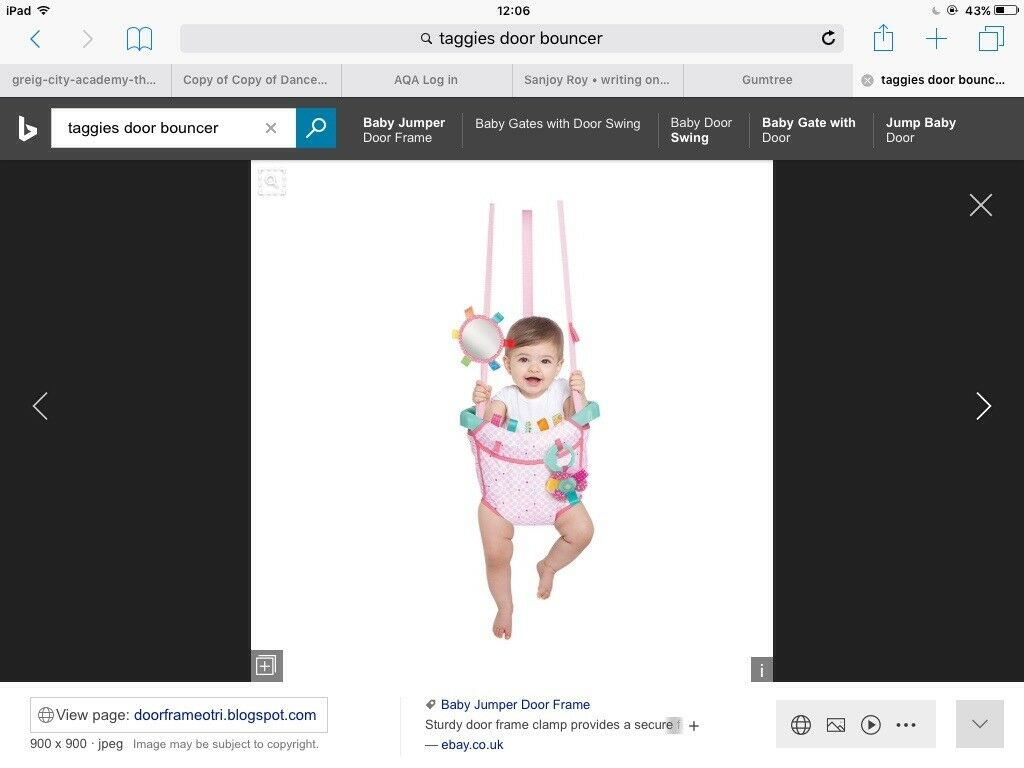 Taggies Baby Door Bouncer | in Kidderminster, Worcestershire | Gumtree