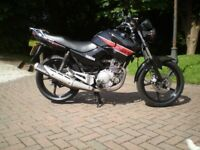 yamaha ybr 125 2013 one lady owner only 5000 miles fsh