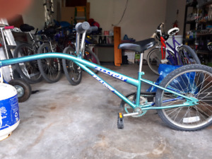 Alley Cat Trailer Bike In Great Condition!