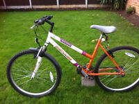 Second hand bike on sell. Fully Working!