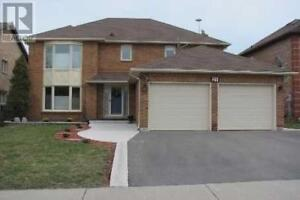 Spacious Upper Level Only With 4 Bedrooms.