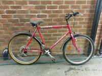Raleigh Mountain Bike 20inch