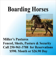 Need to Board your Horses - attention fire evacuees