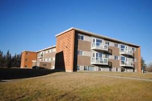 Great 2 bedroom furnished suite in Capilano!