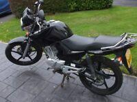 Yamaha ybr 125 60 plate 2011