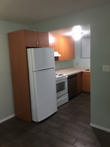 Downstairs Suite for Rent - 6112-33 Avenue NW