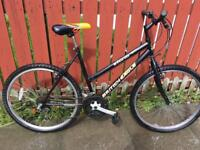 Adults MOUNTAIN BIKE (good working order