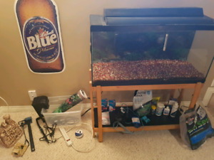 Aquarium 36 gallon with everything you need!