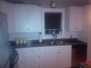 Kitchen Cabinetry / Cabinets / Cupboards including Island