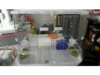 Vision bird cage with extras