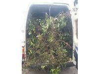 CHEAPER THAN A SKIP BUILDERS RUBBISH REMOVAL / BUSH & HEDGE REMOVAL AND TAKEN AWAY