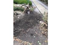 Approximately one ton of nice fertile topsoil free