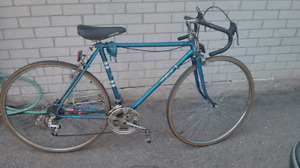 21.5in Mens vintage Skyline 10sp-blue, working condition, tires