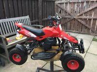 Quad 50cc twist and go