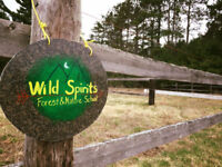 Forest & Nature School Fall sessions