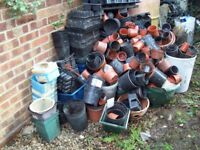 FREE! FREE! FREE!. flower pots,trays & containers