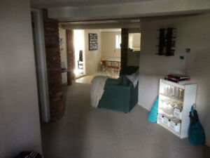1 bedroom in lower of character home