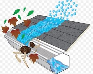 EAVESTROUGHS CLEANING PROMOTION