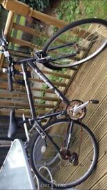 Diamond Back 18 speed Bike